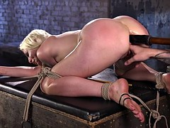 Lorelei's Submission