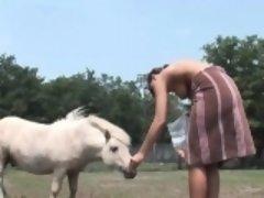 Busty harlot rides on a donkey