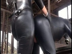 Gode, Latex, Maîtresse, Strapon