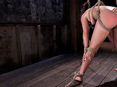 Hogtied slave gets ass caned and flogged