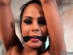 Toyed submissive gets dominated while bound