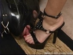 Limits of a Sissy