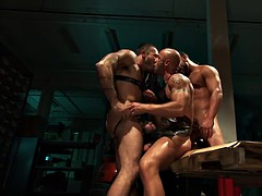 muscular three-way interracial
