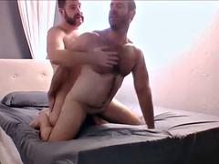 two muscle bear having fun