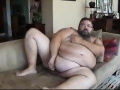 Chub bear about the sofa