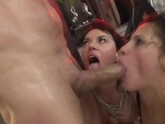 A couple of girls are licking dick and they are looking really good